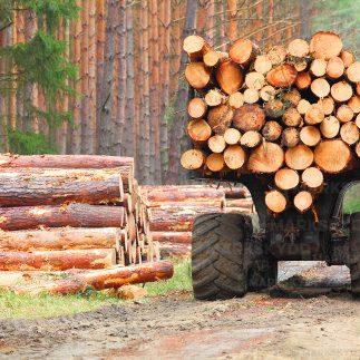 Timber bogmats stockmattor_logo 5